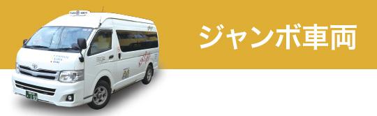 ジャンボ車両